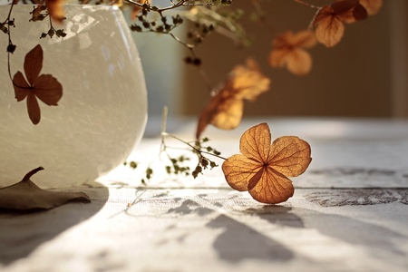 Autumn decoration with dried plants in a vase