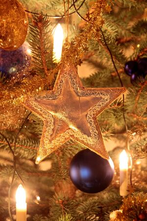 Close-up of gold decoration on Christmas tree Stock Photo - 10554233