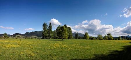 Green meadows at Wharekawe, Coromandel Peninsula, New Zealand Stock Photo