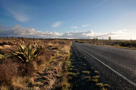 Road  in the Tongariro National Park, Manawatu-Wanganui, New Zealand Stock Photo - 11085135