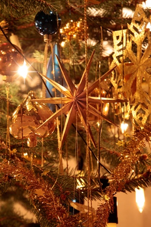 Close-up of gold decoration on Christmas tree Stock Photo - 11085138