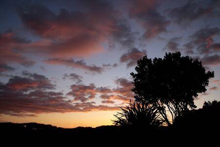 estuary: Evening mood in the small harbor of Coromandel, North Island, New Zealand Stock Photo