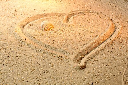 Heart shape in sand with sea shell photo