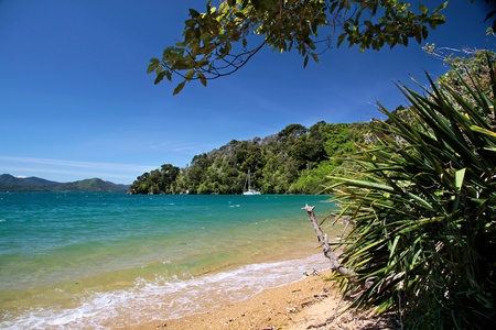 sounds: Beach  in the Marlborough Sounds near Picton, South Island, New Zealand Stock Photo
