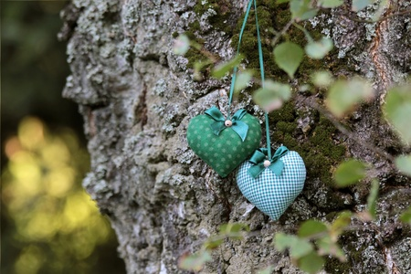 love proof: Two textile hearts on birch tree trunk Stock Photo