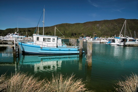 sounds: Harbor of Havelock in the Marlborough Sounds,  New Zealand