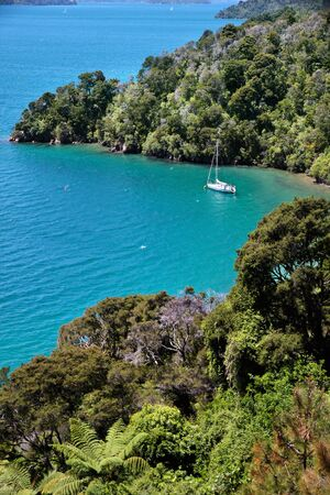 Sailboat in the Marlborough Sounds near Picton, South Island, New Zealand Stock Photo - 13242401