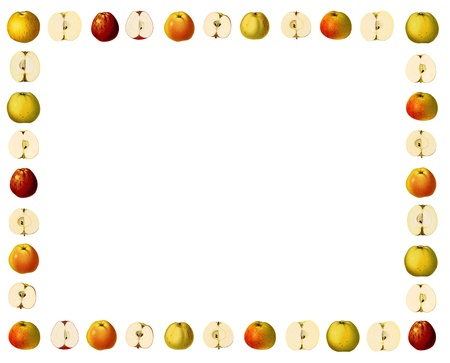 Frame with illustrations of apple varieties in historic style Imagens