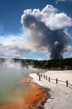 Forest fire in the Wai-o-Tapu geothermal area in Rotorua, North Island, New Zealand Stock Photo - 13484895