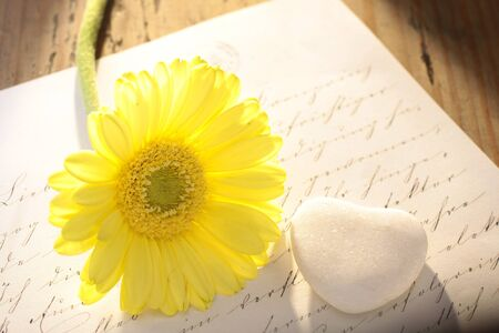 Stone heart with old letter and yellow flower photo