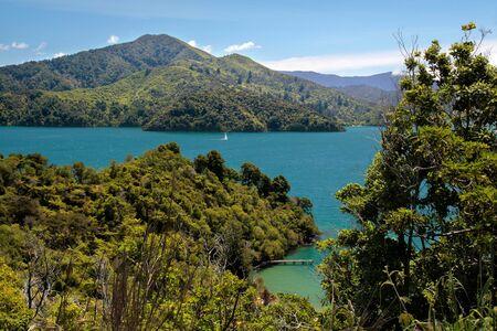 Marlborough Sounds near Picton, South Island, New Zealand photo