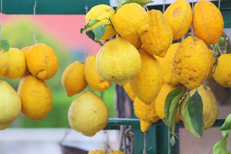 sirmione: lemons on a market stall in Sirmione on Lake Garda, Region of Brescia, Lombardy, Italy Stock Photo