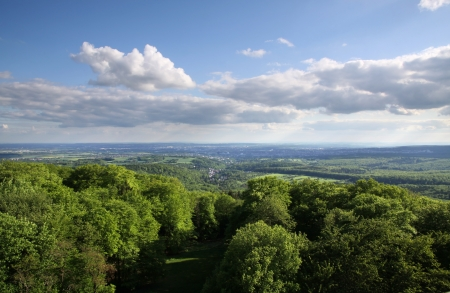 Views of the Taunus forest from the cellar head, Wiesbaden, Hesse, Germany photo