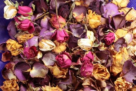 flores secas: Primer plano de un popurr? de colores rosas secas
