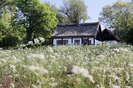 thatched cottage: Idyllic thatched cottage Editorial