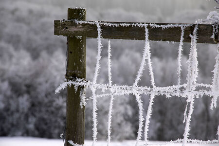 hoar frost: Fence with hoar frost at Engenhahn in the Taunus mountains, Hesse, Germany Stock Photo