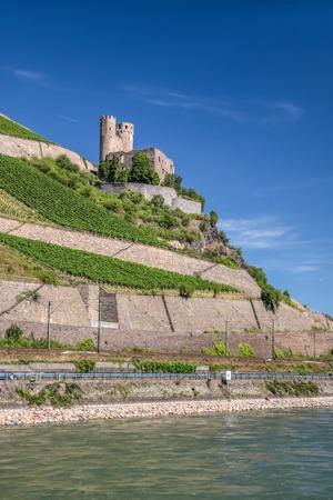 rudesheim: Ruin of castle Ehrenfels near Rudesheim in the Rheingau Hesse Germany