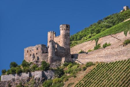 Ruin of castle Ehrenfels near Rudesheim in the Rheingau, Hesse, Germany