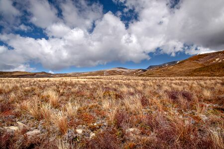 tongariro national park: Meager landscape in the Tongariro National Park ManawatuWanganui New Zealand Stock Photo