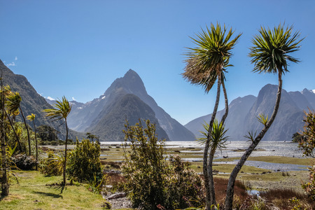 mitre: Milford Sound and Mitre Peak, Southland, South island,  New Zealand