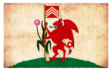 welsh: Flag of the Welsh city Cardiff created in grunge style