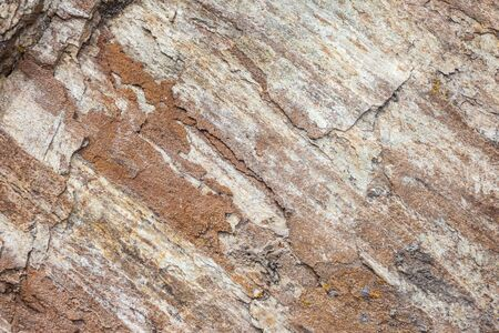 sediment: Close-up of shale rock in the mountains in South Tyrol