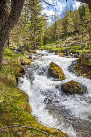 springwater: Mountain stream in Riva di Tures, Reintal, South Tyrol, Italy