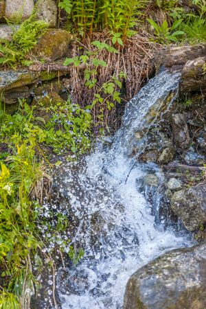 Small mountain stream in the meadow , South Tyrol, Italy Stock Photo