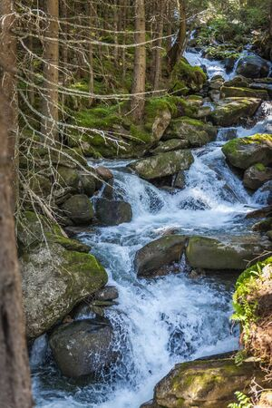 Mounatin stream in Valle Aurina, South Tyrol, Italy Stock Photo