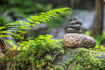 Cairns in the forest with round stones and green fern