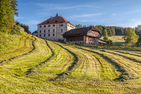 Mown meadows in Lengmoos am Ritten, South Tyrol, Italy Stock Photo