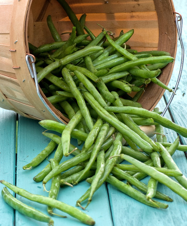greenbeans: fresh picked green beans in a basket Stock Photo