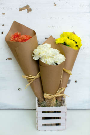 cornet: Three colored bouquet of carnations in paper cornet. Stock Photo