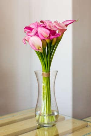 calas blancas: Manojo de calas de color rosa en el florero sobre fondo blanco Foto de archivo