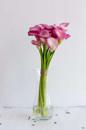 lilies: Bunch of pink callas in the vase on white background Stock Photo