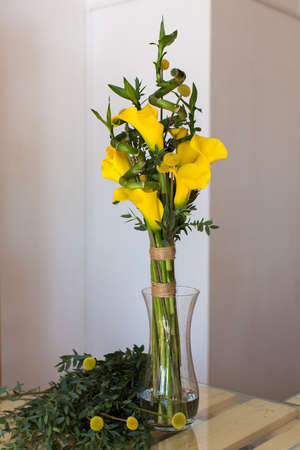 calas blancas: Bunch of yellow callas in the vase on white background