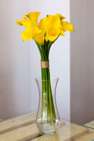calas blancas: Manojo de calas amarillas en el florero en backgroundBunch blanca de las calas amarillas en el florero sobre fondo blanco
