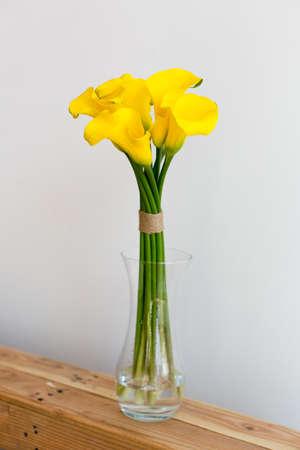 White Callas: Manojo de calas amarillas en el florero sobre fondo blanco Foto de archivo