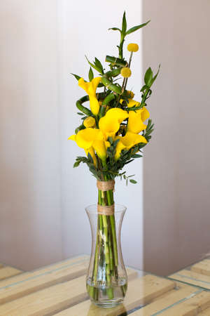 callas: Bunch of yellow callas in the vase on white background