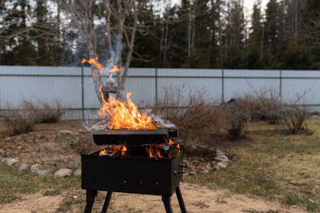 Firewood is burning in a barbecue on the background of nature Banque d'images