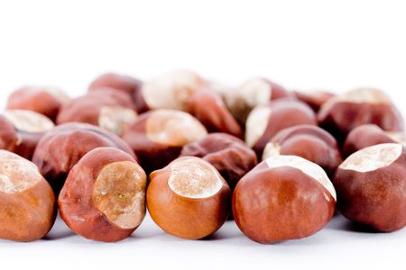Closeup of Chestnuts isolated on white background Stock Photo - 8073412