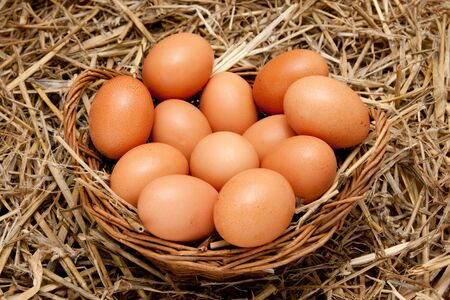 brown organic eggs in a basket on straw