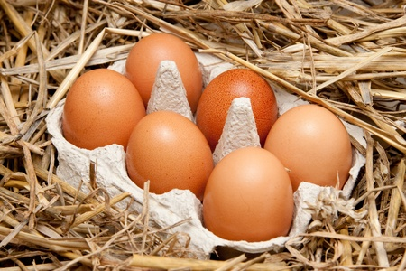 brown organic eggs in a box on straw Stock Photo