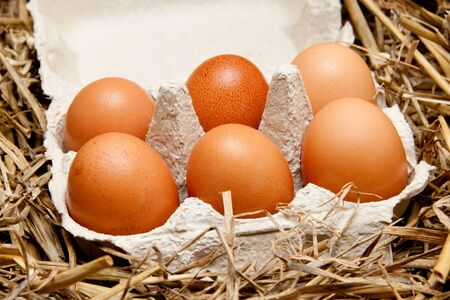 brown organic eggs in a box on straw photo