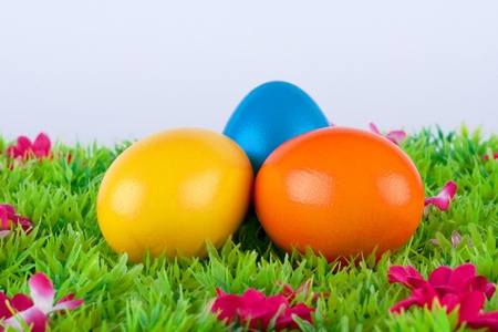colorful painted easter eggs located on a green meadow with flowers Stock Photo - 17094381