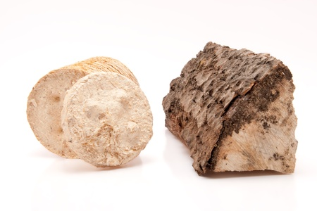 inexhaustible: closeup of a piece of firewood and a wooden briquette isolated on white background