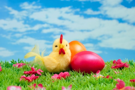 Easter: yellow chicken sitting on a green meadow with flowers and colorful easter eggs in front of a blue sky with white clouds Stock Photo