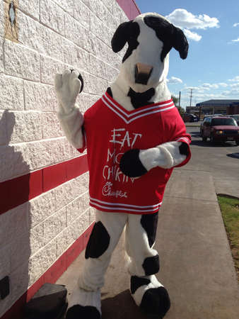 the chick fill a cow