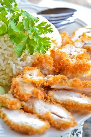 conspicuous: fry chicken rice of thailand