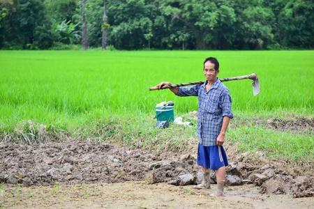 old asian man in farm of thailand southeast asia Banco de Imagens